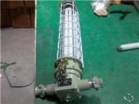 Yueqing завод специального питания DGS36-127J моя взрывонепроницаемой люминесцентными лампами моя взрывонепроницаемой люминесцентных ламп