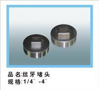 Supply wire port plug