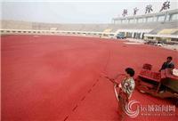 供应宜兴幼儿园epdm跑道|徐州幼儿园塑胶跑道