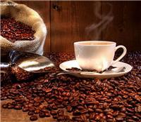Fournir à l'agent de l'importation du café dédouanement compagnie de café Shenzhen déclaration agence d'importation