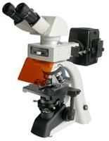 落射熒光顯微鏡,生物顯微鏡廠家,雙目顯微鏡報價