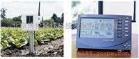 蔬菜生產土壤溫濕度監測站Davis6345