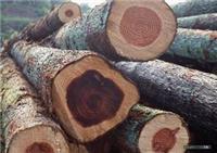 Hérisson de bois de santal africain déclaration d'importation - a salué l'initiative de consulter