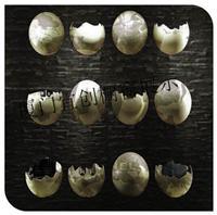 供应橱窗蛋壳道具 橱窗鸵鸟蛋道具定制厂家