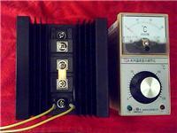 玻纖溫度控制儀,