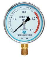 惠华仪表-YN100耐震(抗震)压力表