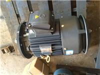 AEVP-FC电机 立式电机 冷却塔专用