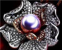 中山旅游购物开心买珠宝