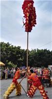 南宁开业舞狮醒狮表演 南宁专业舞狮队 点睛采青旺场