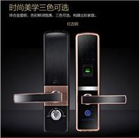 力科德思指纹密码锁600长沙可试用家用智能锁电子锁配入户防盗门铜门不锈钢门木门