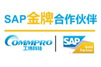 sap云erp SAP Business ByDesign SAP BYD