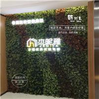 仿真植物墙立体背景墙绿植墙仿真植物绿化墙假植物墙绿植墙配材