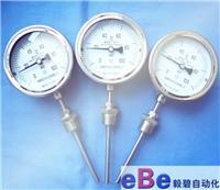 上海不锈钢径向双金属温度计WSS-411