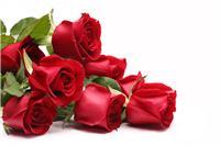 供应明德优质食品添加剂---玫瑰油香精