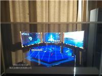 厂家供应自发光透明OLED显示屏--北京