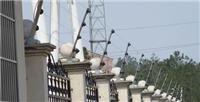 珠海网络电子围栏,横琴电子围栏报警系统,脉冲电子围栏安装