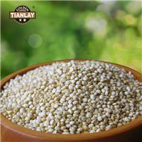 藜麦原来不只是营养