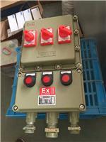 防爆配电箱  配电箱价格 防爆照明工具  防爆管件