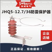 10KV线路型防雷保护器