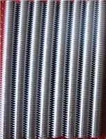 標準304不銹鋼絲桿 通絲 螺桿 牙條 M2M2.5M3M4M5M6M8M10M12M20