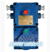 KXH127煤矿用隔爆本安型通讯声光信号器,KXH127声光通讯信号器 隔爆设备 防爆电器 价格优惠 厂价直供,现货批发零售