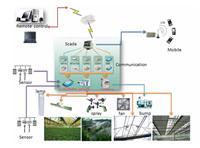 智慧农业种植找卓振智能,卓振智能温室大棚种植系统,物联网农业应用优秀厂家