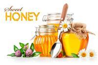 巴西蜂蜜上海进口哪家物流公司/报关行比较好