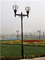 优惠的普烁批发太阳能杀虫灯物理防治虫害绿色防控还原绿色生态,划算的普烁太阳能杀虫灯 要到哪买