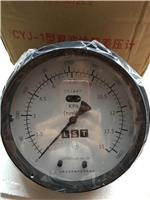 兰石低温+CYJ-1差压液位计