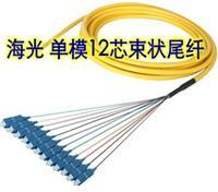 海光HG-ST/SC/FC/LC 1.5M单模12芯束状光纤尾纤