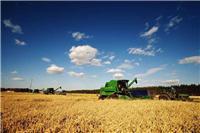黑龙江大庆大米供应销售,大庆优质水稻供应找哪家