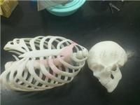 广州哪有3D打印,3D打印厂家,3d打印公司|集伟科技