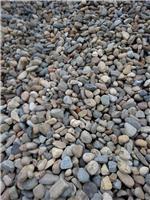 鹅卵石,砾石,景观石大量供应