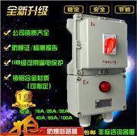BLK52-125A防爆断路器