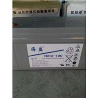 海盗蓄电池HD12-65价格 广东总代理
