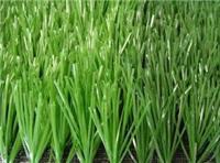 塑料单丝人造草坪湖北绿昂体育运动场地草坪