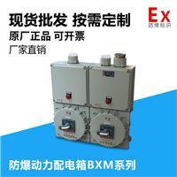 防爆配电箱(照明 动力)配电箱BXM(D)系列专业定制采购电话18257775718