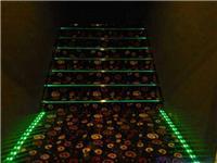 厂家直销台阶灯,埋地灯,阶梯指示等