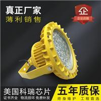 揭阳食品厂LED防爆灯 80w100w120w 厂家直销
