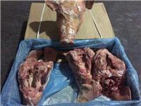 供应 进口猪头 冷冻猪头 法国35125002厂猪头 一手货源 正关产品