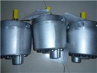 R系列HAWE柱塞泵