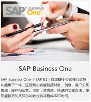 外贸企业SAPbussiness one成功案例中科华智