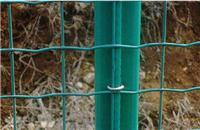 深圳大型护栏网生产厂家 框架护栏网用途