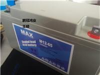 镇江MAX蓄电池M12-40价格