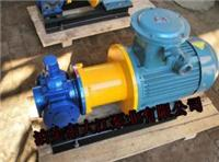 专业生产磁力圆弧泵