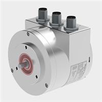 FSG ernsteuergeraete传感器 FSG