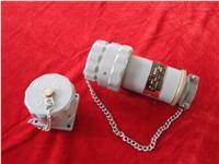 (精泰)15-300A防爆插头插座 防爆插销 插接装置(无火花)