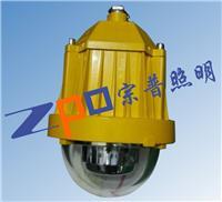 NFC9185-L48/NFC9185-L48A LED泛光灯NFC9185