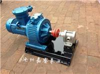 嘉睿供應福建廈門2CY-3/2.5齒輪泵 高壓 無泄漏齒輪油泵