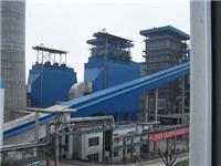 山西瑞洁环保水泥厂除尘器